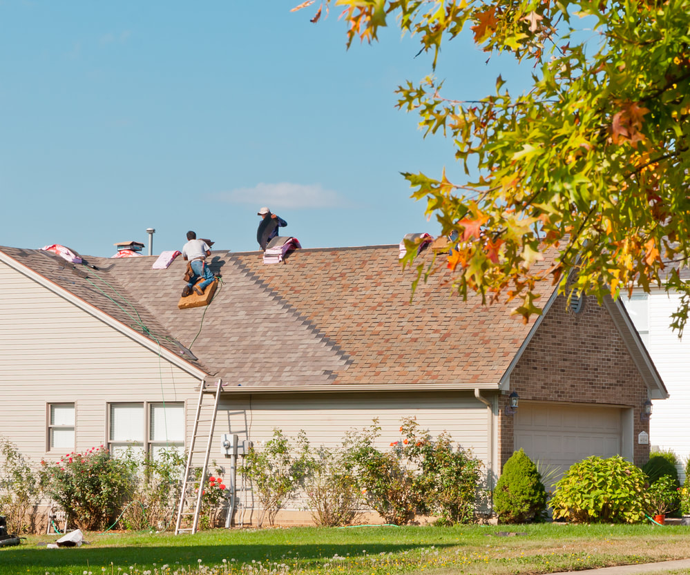 Asphalt shingle roof Springfield
